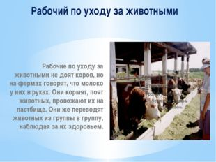 Рабочий по уходу за животными Рабочие по уходу за животными не доят коров, но