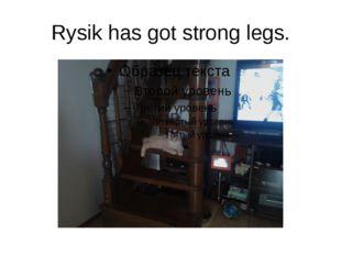 Rysik has got strong legs.