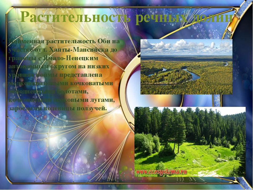 Пойменная растительность Оби на участке от г. Ханты-Мансийска до границы с Ям...