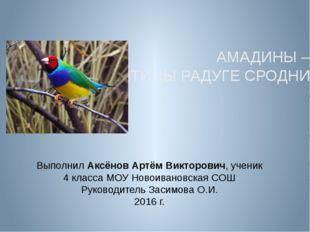 Выполнил Аксёнов Артём Викторович, ученик 4 класса МОУ Новоивановская СОШ Ру