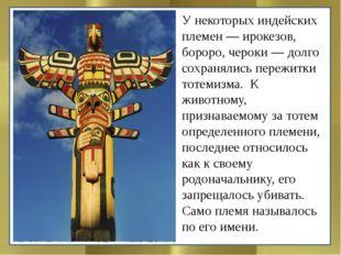 У некоторых индейских племен — ирокезов, бороро, чероки — долго сохранялись п