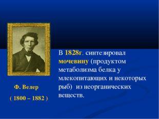 Ф. Велер ( 1800 – 1882 ) В 1828г. синтезировал мочевину (продуктом метаболи