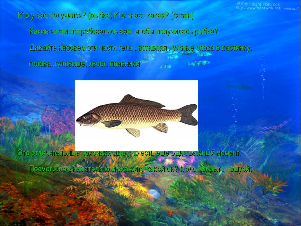 Кто у вас получился? (рыбка).Кто знает какая? (сазан) Какие части потребовали...