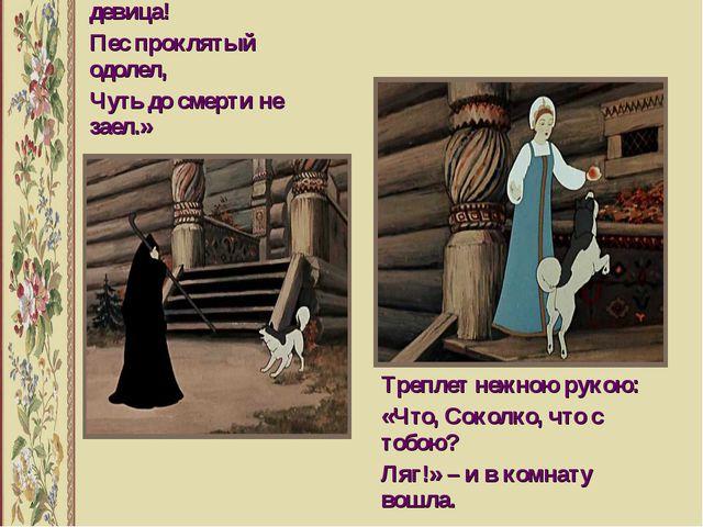 Отвечает ей черница: «Ох ты, дитятко девица! Пес проклятый одолел, Чуть до с...