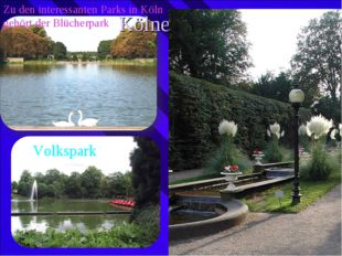 Zu den interessanten Parks in Köln gehört der Blücherpark Kölner Parks Volksp