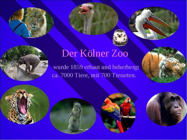 Der Kölner Zoo wurde 1859 erbaut und beherbergt ca. 7000 Tiere, mit 700 Tiera...