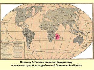 Поэтому А.Уоллес выделил Мадагаскар в качестве одной из подобластей Эфиопской