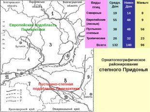 Орнитогеографическое районирование степного Придонья Европейская подобласть П