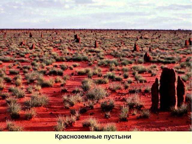 Красноземные пустыни