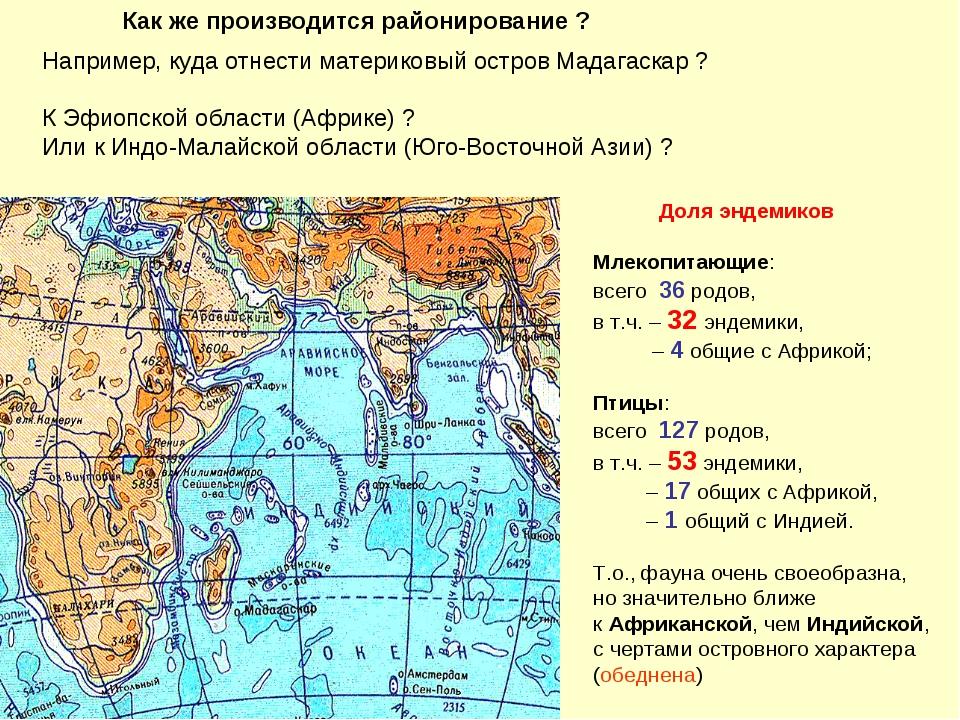 Например, куда отнести материковый остров Мадагаскар ? К Эфиопской области (А...