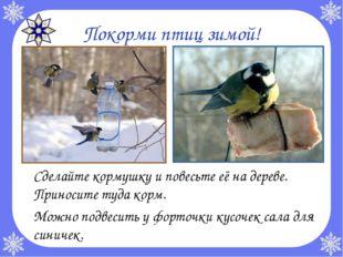 Покорми птиц зимой! Сделайте кормушку и повесьте её на дереве. Приносите туд