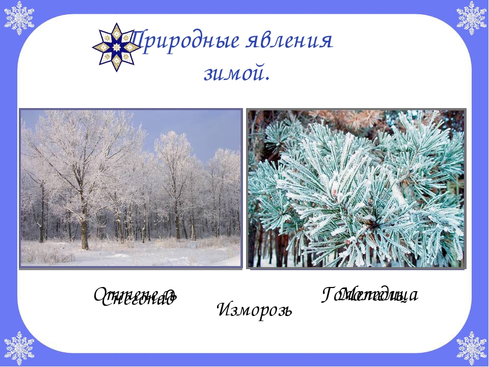 Природные явления зимой. Снегопад Метель Изморозь