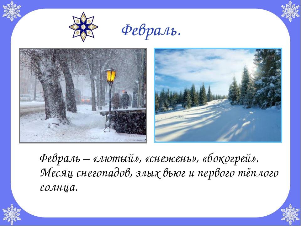 Февраль. Февраль – «лютый», «снежень», «бокогрей». Месяц снегопадов, злых вь...