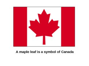 A maple leaf is a symbol of Canada