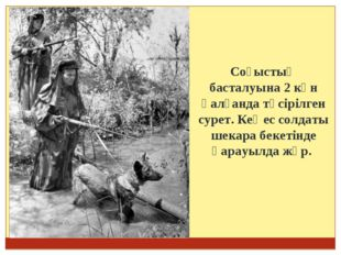 Соғыстың басталуына 2 күн қалғанда түсірілген сурет. Кеңес солдаты шекара бе