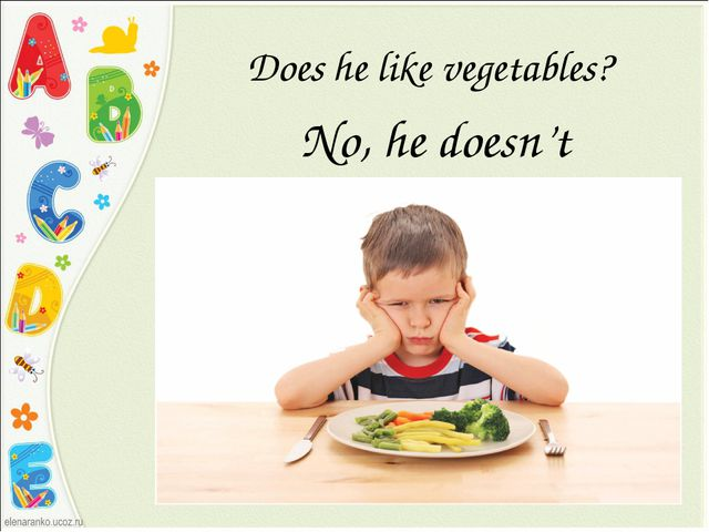 Does he like vegetables? No, he doesn't