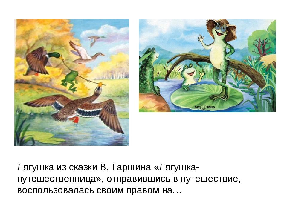 Лягушка из сказки В. Гаршина «Лягушка-путешественница», отправившись в путеше...