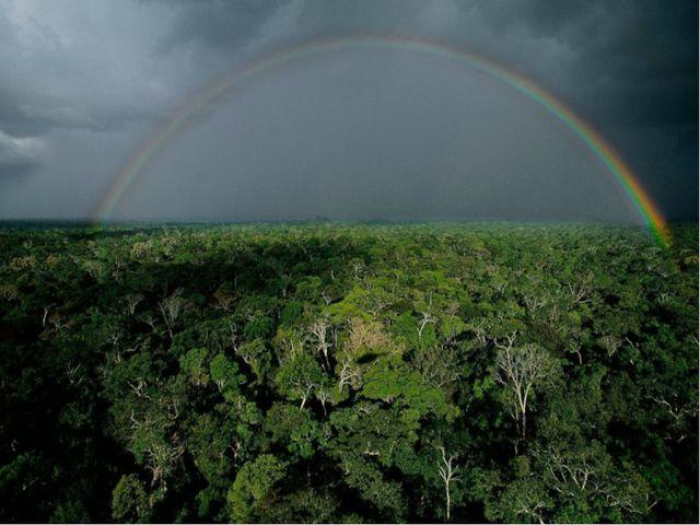Бразилия находится в Южном полушарии, и времена года сменяются в обратном пор...