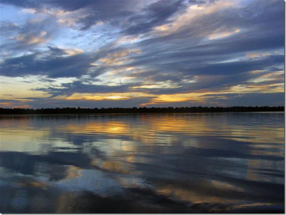 Путешествие в дельту реки Амазонки очень впечатлило, потому что было насыщено...