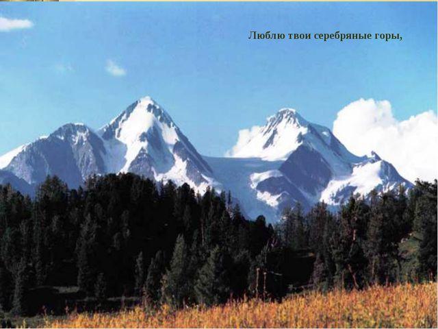 Люблю твои серебряные горы,