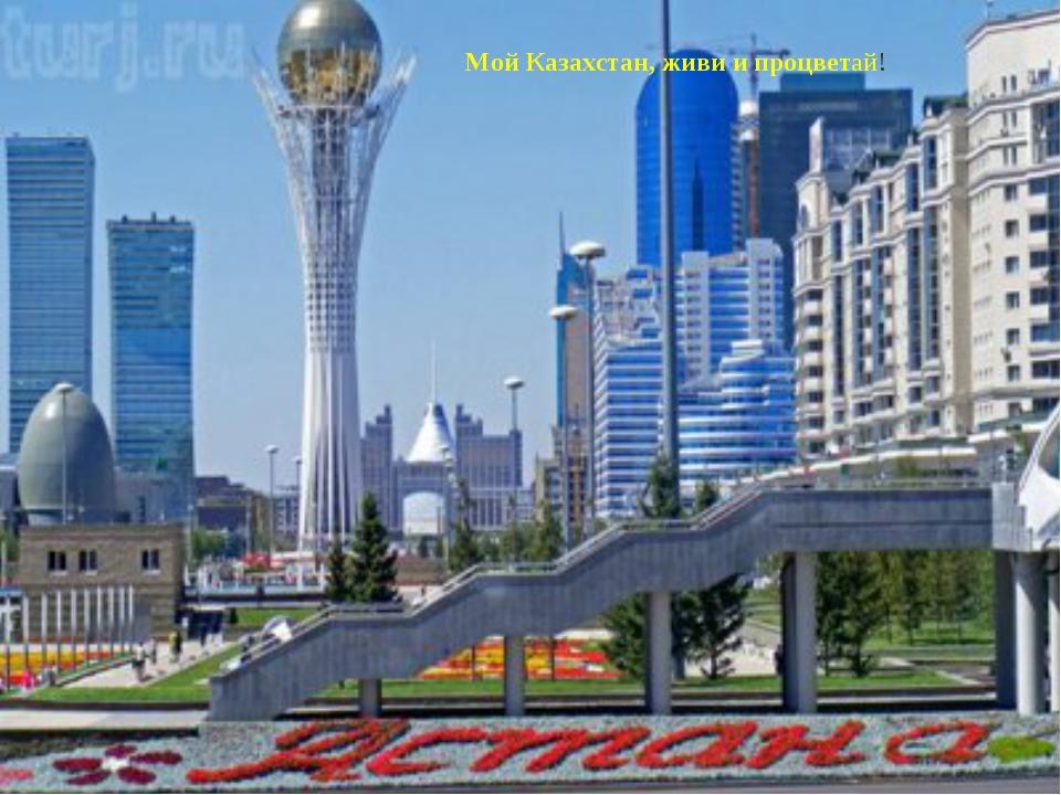 Мой Казахстан, живи и процветай!