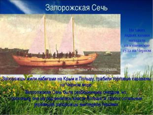 Запорожская Сечь Запорожцы жили набегами на Крым и Польшу, грабили торговые к