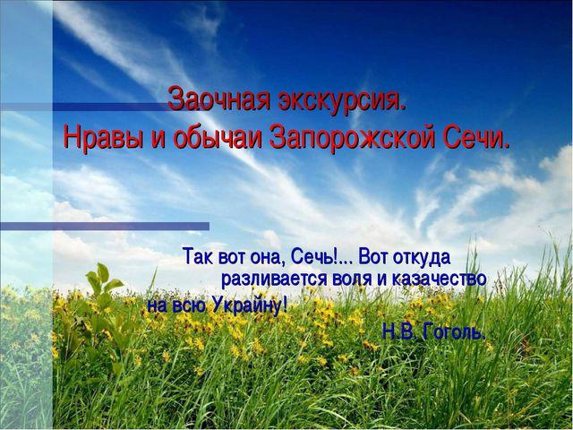 Заочная экскурсия. Нравы и обычаи Запорожской Сечи. Так вот она, Сечь!... Во...