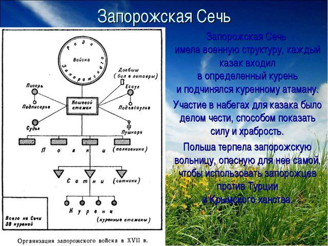 Запорожская Сечь Запорожская Сечь имела военную структуру, каждый казак входи...