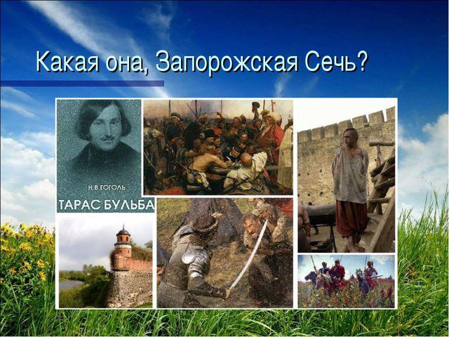 Какая она, Запорожская Сечь?