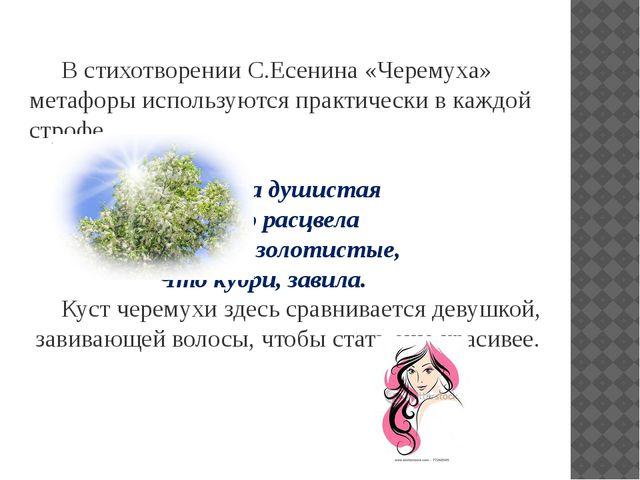 В стихотворении С.Есенина «Черемуха» метафоры используются практически в каж...