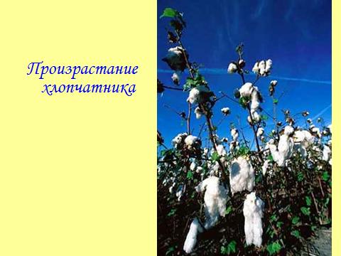hello_html_7b02b31a.png