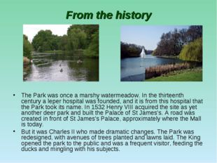 From the history The Park was once a marshy watermeadow. In the thirteenth ce