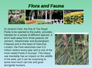 Flora and Fauna St James's Park, the first of The Royal Parks to be opened to