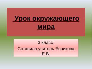 Урок окружающего мира 3 класс Сотавила учитель Ясникова Е.В. 2