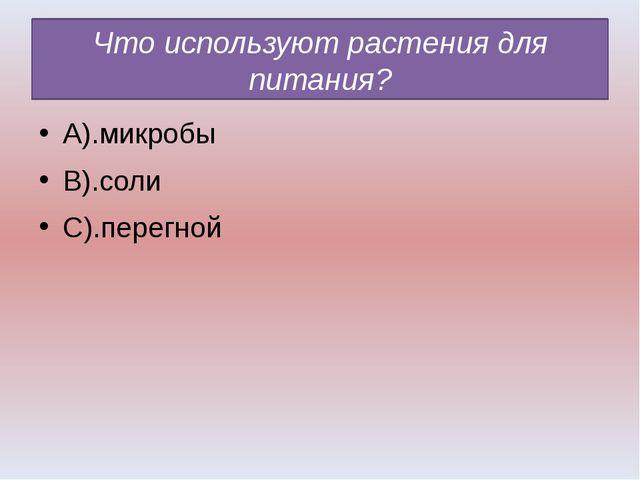 Что используют растения для питания? А).микробы В).соли С).перегной