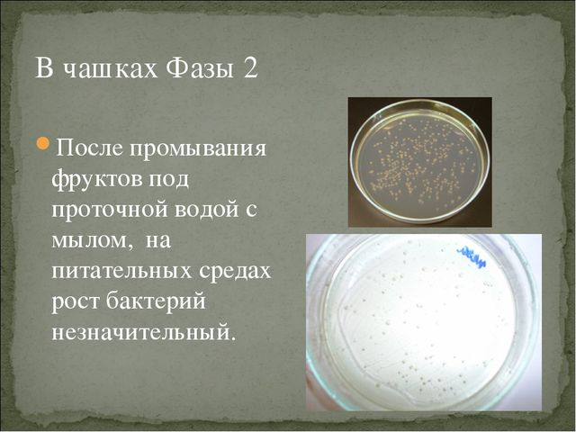 В чашках Фазы 2 После промывания фруктов под проточной водой с мылом, на пита...