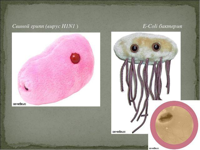 Свиной грипп (вирус H1N1 ) E-Coli бактерия