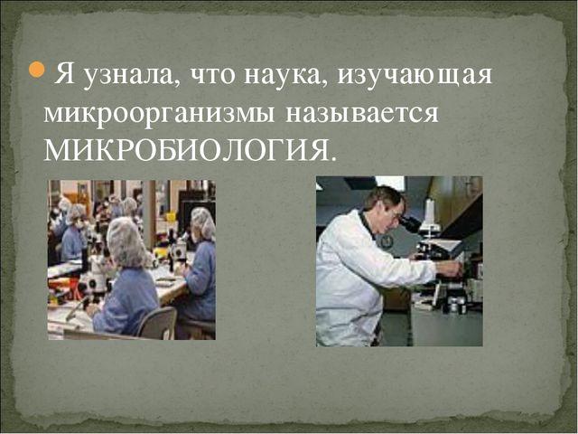 Я узнала, что наука, изучающая микроорганизмы называется МИКРОБИОЛОГИЯ.