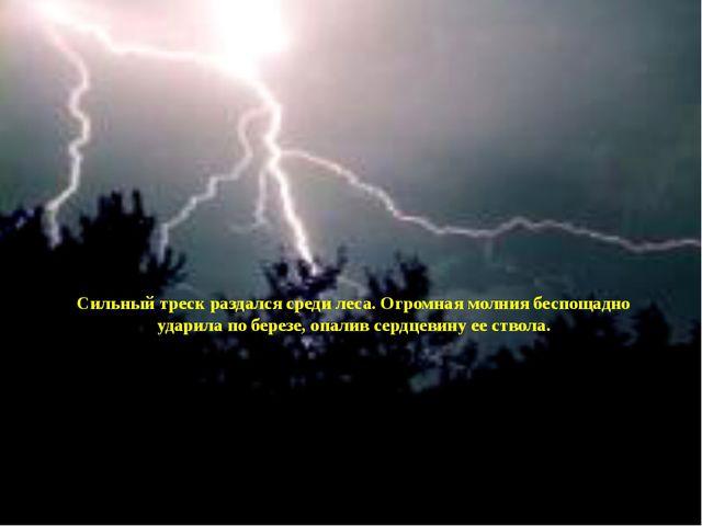 Сильный треск раздался среди леса. Огромная молния беспощадно ударила по бер...