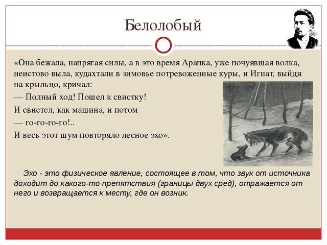 Белолобый «Она бежала, напрягая силы, а в это время Арапка, уже почуявшая вол...