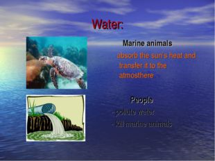 Water: Marine animals absorb the sun's heat and transfer it to the atmosthere