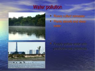 Water pollution Rivers collect rainwater Plants absorb and clean water People