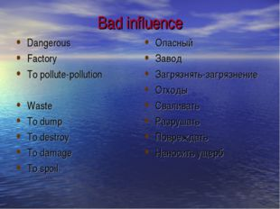Bad influence Dangerous Factory To pollute-pollution Waste To dump To destroy