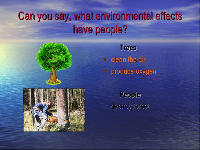 Can you say, what environmental effects have people? Trees clean the air prod...