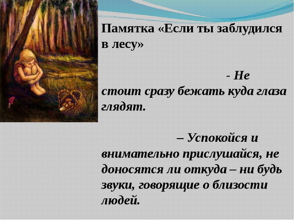 Памятка «Если ты заблудился в лесу» - Не стоит сразу бежать куда глаза глядят...
