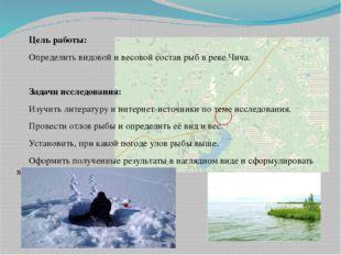 Цель работы: Определить видовой и весовой состав рыб в реке Чича. Задачи иссл