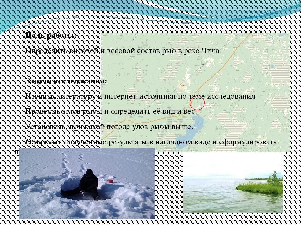 Цель работы: Определить видовой и весовой состав рыб в реке Чича. Задачи иссл...