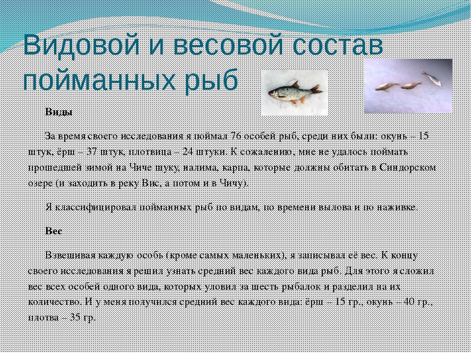 Видовой и весовой состав пойманных рыб Виды За время своего исследования я по...