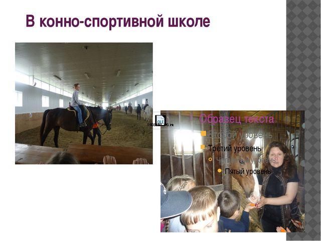 В конно-спортивной школе