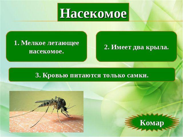 1. Мелкое летающее насекомое. 2. Имеет два крыла. 3. Кровью питаются только с...